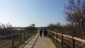 promenade-bord-Roule-nature